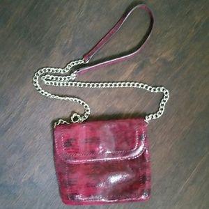 Banana Republic crossbody small purse